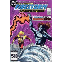 Fury of Firestorm the Nuclear Man Issue 43