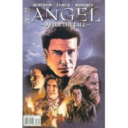 Angel: After the Fall  Issue 14b Variant