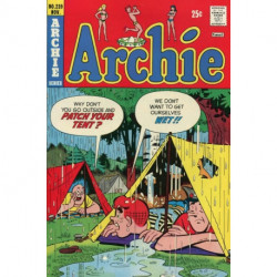 Archie Comics  Issue 239