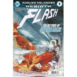 The Flash Vol. 5 Issue 14w