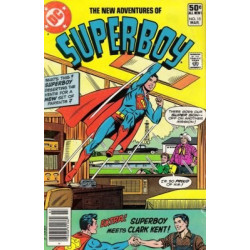 The New Adventures of Superboy  Issue 15