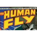 Human Fly